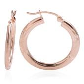14K YG Hoop Earrings (1.8 g)