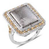Marvelous Meteorites, Diamond 14K YG and Platinum Over Sterling Silver Ring (Size 7.0) TDiaWt 0.04 cts, TGW 20.290 cts.
