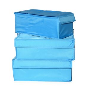 Blue Undergarment/Jewelry/Accessory Organizer Set of 3