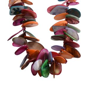 Multi Color Shell Necklace on Red Cord (16 in)
