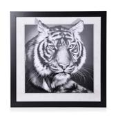 3D Black and Whiter Tiger Print Picture in Frame (16.5x16.5x0.5 in)