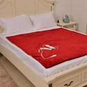 TLV Red Electric Heated Mircro Plush Flannel Sherpa   Throw Blanket (50x60 in)