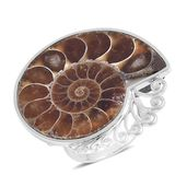 Ammonite Sterling Silver Statement Ring (Size 6.0) TGW 59.35 cts.