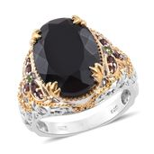 Australian Black Tourmaline, Mozambique Garnet, Russian Diopside 14K YG and Platinum Over Sterling Silver Ring (Size 5.0) TGW 13.91 cts.