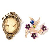 Cameo, Resin, Multi Color Austrian Crystal, Enameled Goldtone Set of 2 Cameo and Hummingbird Brooch